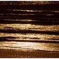 写真: 輝く波