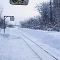 写真: 雪の向こうへ