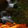 写真: 湯川渓谷