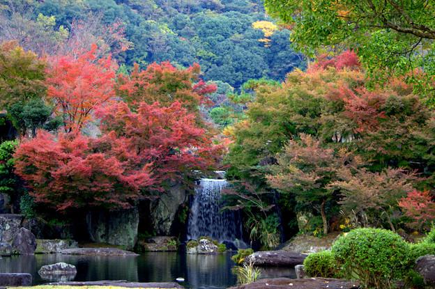 渓石園の紅葉2013