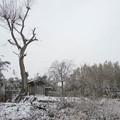 Photos: 【神様】藤岡町部屋付近水神宮庚申塔