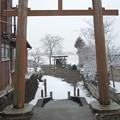 Photos: 【鳥居】藤岡町部屋付近鹿島神社