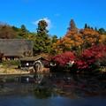 Photos: 田舎? (1)