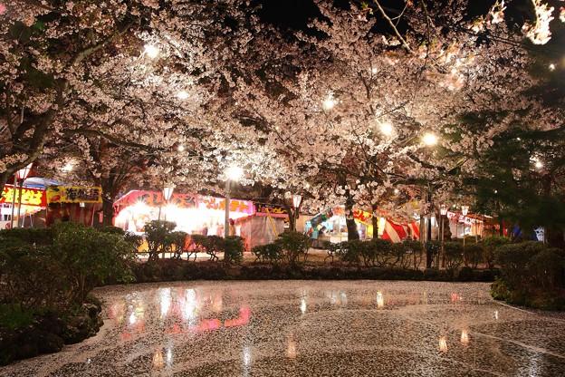 散りゆく桜とお祭りと