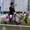 写真: 川崎競馬の誘導馬06月開催 あやめVer-120611-10-large