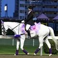 写真: 川崎競馬の誘導馬06月開催 あやめVer-120611-14-large