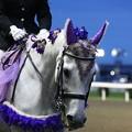写真: 川崎競馬の誘導馬06月開催 あやめVer-120611-17-large