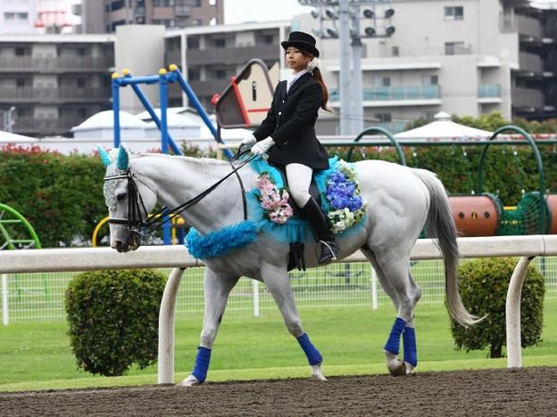 写真: 川崎競馬の誘導馬06月開催 紫陽花Ver-120611-04-large