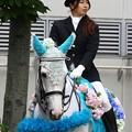 写真: 川崎競馬の誘導馬06月開催 紫陽花Ver-120611-21-large