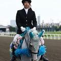 写真: 川崎競馬の誘導馬06月開催 紫陽花Ver-120611-07-large