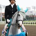 写真: 川崎競馬の誘導馬06月開催 紫陽花Ver-120611-18-large