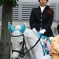 写真: 川崎競馬の誘導馬06月開催 紫陽花Ver-120613-05-large