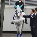 写真: 川崎競馬の誘導馬06月開催 初心者マークVer-120615-01-large