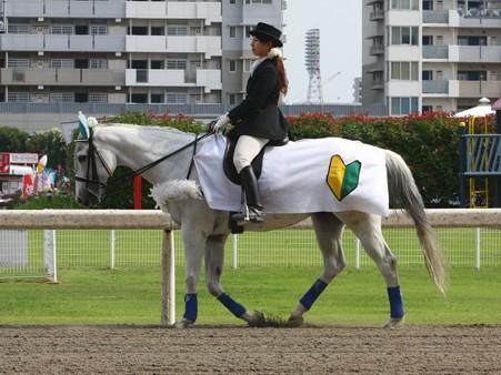 川崎競馬の誘導馬06月開催 初心者マークVer-120615-06