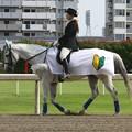 写真: 川崎競馬の誘導馬06月開催 初心者マークVer-120615-06-large