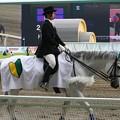 写真: 川崎競馬の誘導馬06月開催 初心者マークVer-120615-12-large