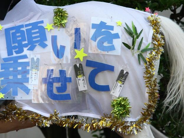 写真: 川崎競馬の誘導馬07月開催 七夕飾りVer-120702-03-large