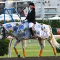 写真: 川崎競馬の誘導馬07月開催 七夕飾りVer-120702-04-large