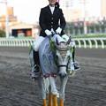 写真: 川崎競馬の誘導馬07月開催 七夕飾りVer-120702-06-large