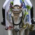 写真: 川崎競馬の誘導馬07月開催 七夕飾りVer-120702-09-large