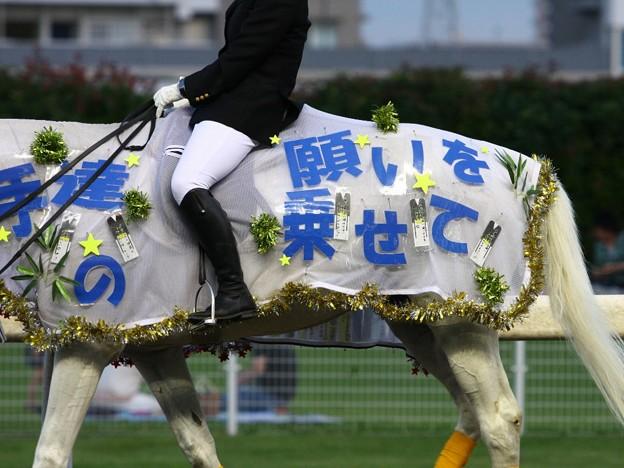 Photos: 川崎競馬の誘導馬07月開催 七夕飾りVer-120702-11-large
