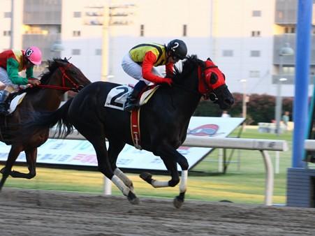 120820-川崎5R3歳2イ優勝ラムジュレップ