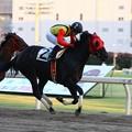 写真: 120820-川崎5R3歳2イ優勝ラムジュレップ