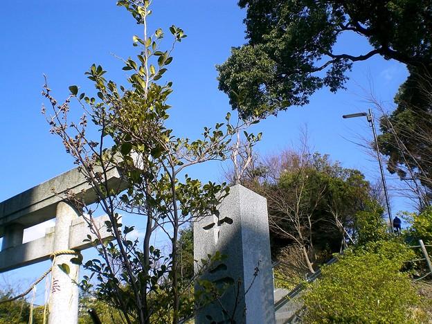 十二神社の入り口