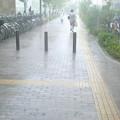 Photos: 西宮ガーデンズから出ようとしたら、すごい降り。傘がない。買いに行ったけどなかった。