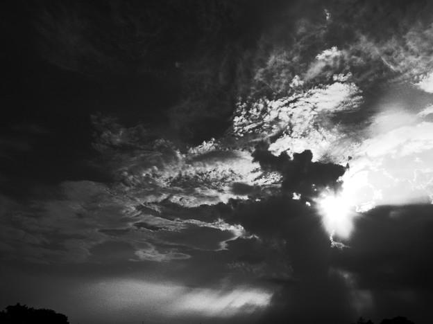天使の梯子17