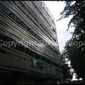 Photos: P3220040