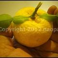 Photos: P3350815