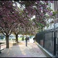 Photos: P3480776