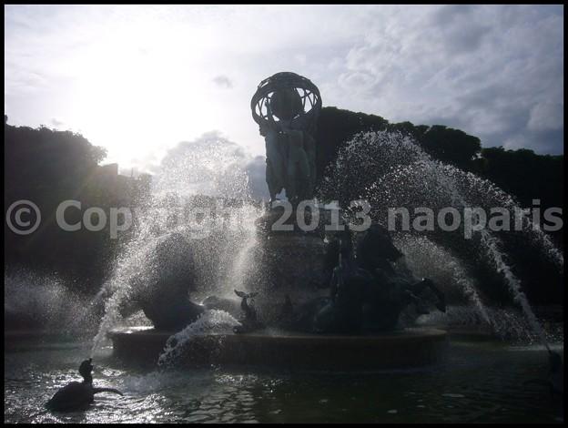 写真: P3520599