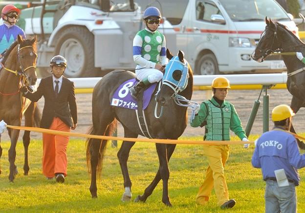 ?Fire(JPN)&N.Yokoyama #japancup #horseracing