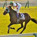 ?Hokko Brave(JPN)&K.Miura #japancup #horseracing