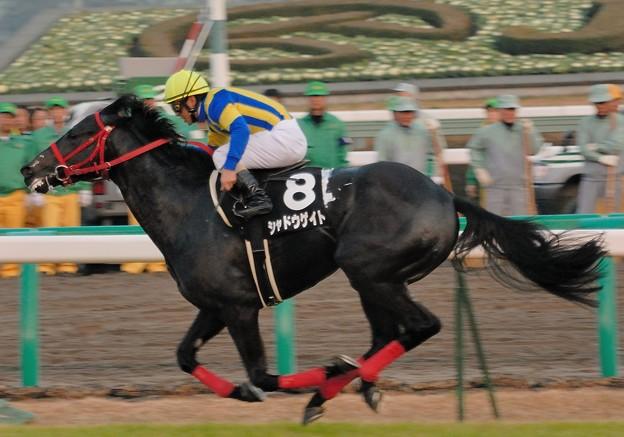 [香取特別06]レースは結局シャドウゲイトが逃げ切り7馬身差つけて圧勝。年明けの金杯を勝って国際G1馬に成長していきます。