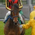 Photos: [070311中山11R中山牝馬S]じっとみてくれてるロフティーエイムと隼人