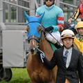 Photos: [070311中山11R中山牝馬S]ぼーっとしてそうなヤマニンメルベイユ