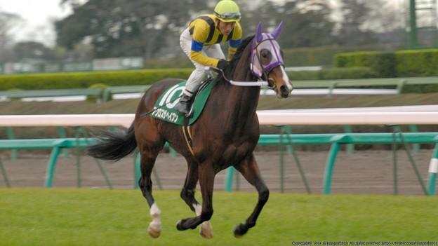 [070311中山11R中山牝馬S]パドックよりはだいぶ落ち着いたアクロスザヘイブン(吉田豊)