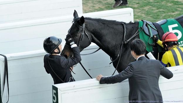 [140316中山11R中山牝馬S]いままでおつかれさまのペタペタをいただくノーブルジュエリー。先生も笑顔なんでしょうね。