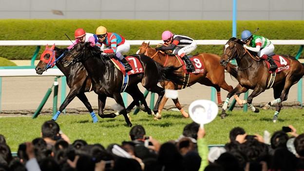 [140406阪神11R大阪杯]キズナが余裕の表情でトウカイパラダイスに並ぶ