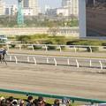 Photos: [140409船橋10RマリーンC]エンプレス杯の再来みたいになちゃった7馬身差