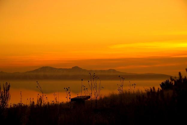 Antelope IslandからのGreat Salt Lake ♪