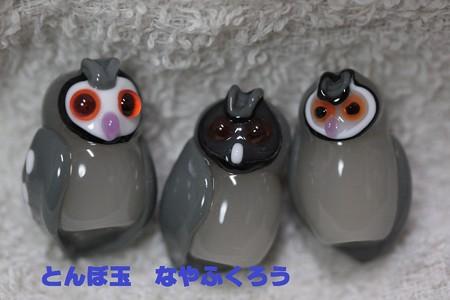 とんぼ玉 H25.7.4 1