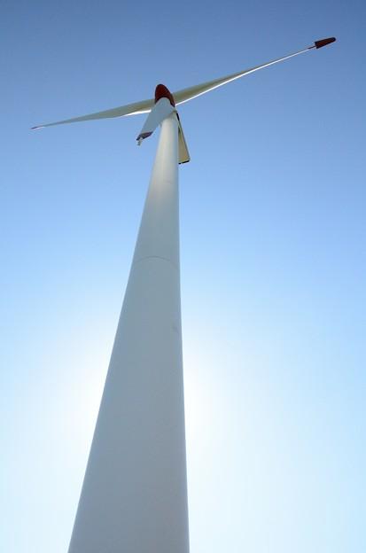 逆光の風車