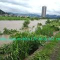 Photos: DCF00262