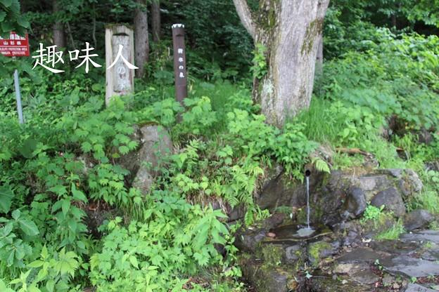 蔵王の湧水 樹氷の泉