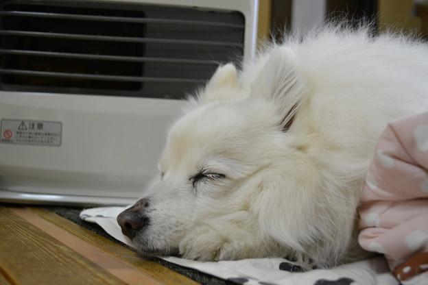 眠いんです2