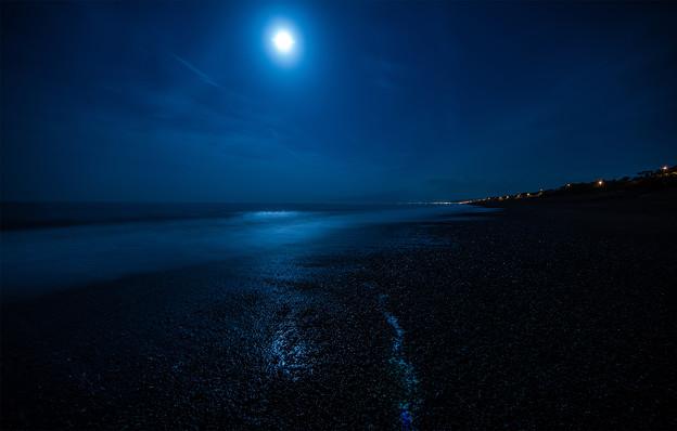 夜の浜辺にて-1 - 写真共有サイ...